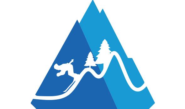 proiect ski